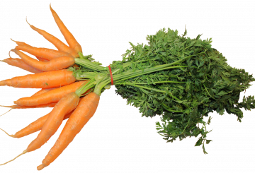 Global Carotenoids Market – BASF SE, Royal DSM N.V. Chr. Hansen A/S, FMC Corporation, Kemin Industries, Inc.