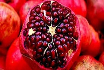 United States Pomegranate Market (2017-2022) – Sales Revenue,Grow Pricing and Resources