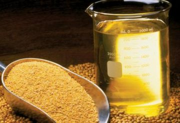 Global Soymeal Market Growth Rate Analysis 2017-2022
