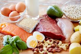 Animal Protein Ingredient Market